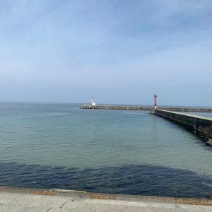 浜浦水産前の海